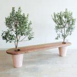 Banc jardin bois original avec pieds en pot d arbustes oliviers