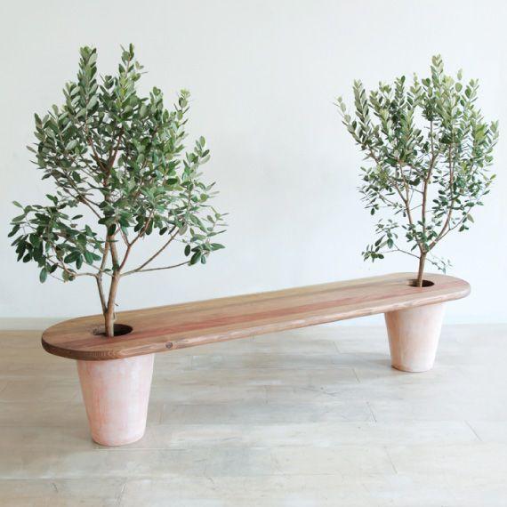 Banc jardin bois original avec pieds en pot d arbustes oliviers ...
