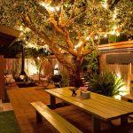 Eclairage exterieur dans arbre et lumiere indirecte pied de buisson