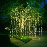 Eclairage led maison exterieur pour habillage d un arbre facon cascade
