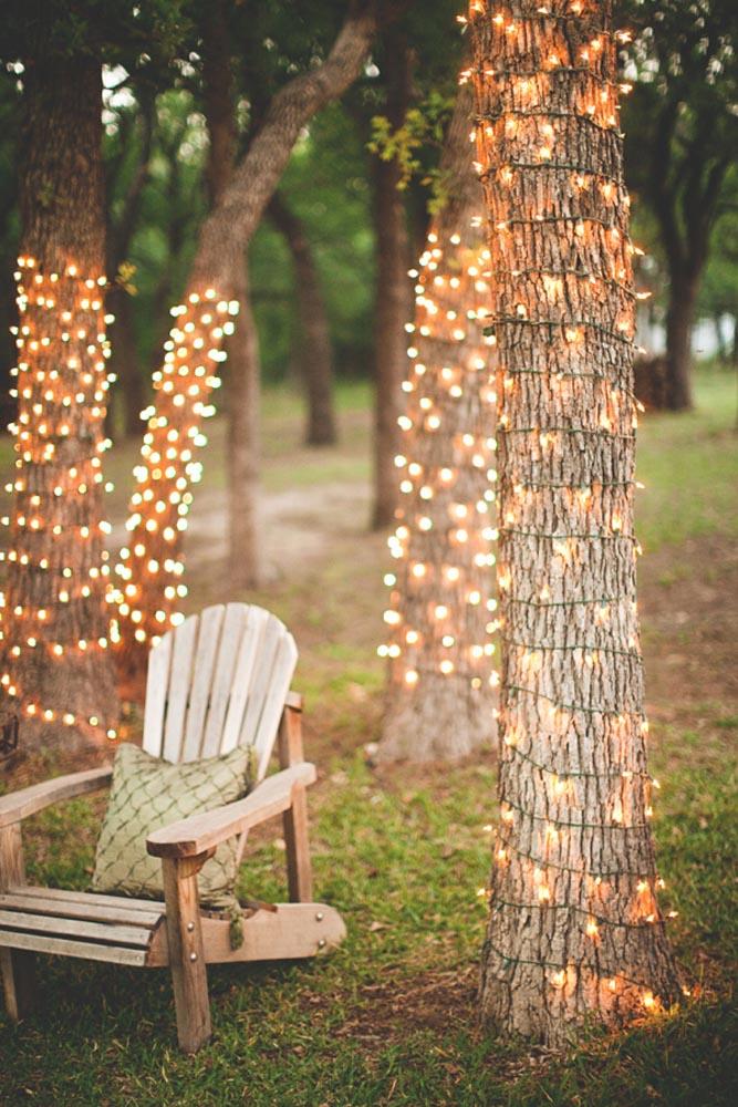 Habillage arbre avec eclairage par guirlandes led le long du tronc