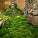 Jardin japonais mousse et statues