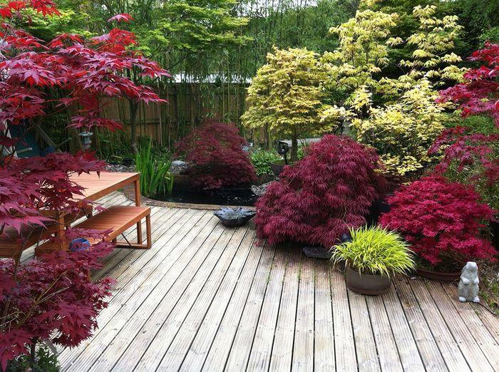 Jardin japonais sur terrasse - Salon de Jardins