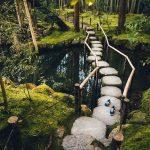 Quiétude du jardin japonais