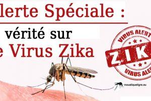Alerte au virus zika